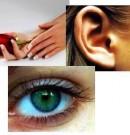 Sei visivo, auditivo o cinestesico? Scoprilo con questo test!